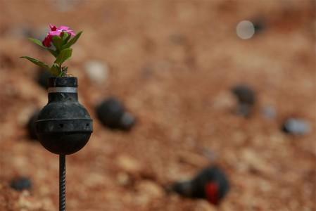 flowers_grenade_4